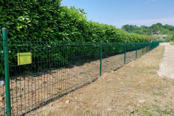 Altezza recinzione di confine