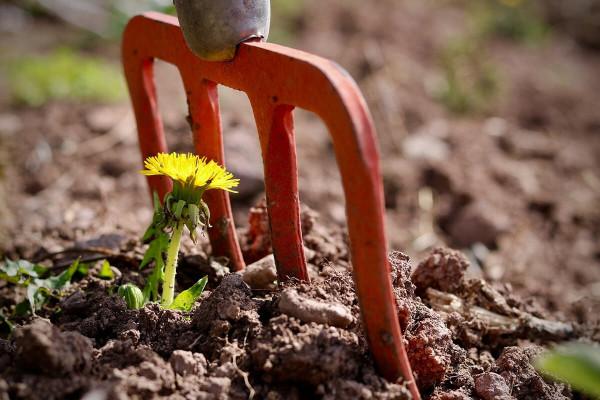 Come recintare un orto